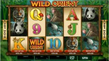 Wild Orient Tiny RE